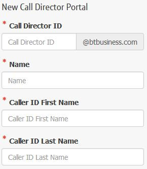 Screenshot - Setting up Call Director
